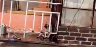 Video: A pesar de la lluvia dejan a pequeño pug en un balcón
